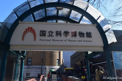 MUSEUM SCIENCE AND NATURE JEPANG