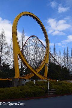 shuttle loop