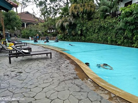 swimming pool novus