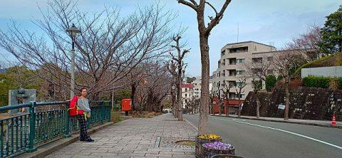 museum atomic bom nagasaki, urakami prison, korban tewas di nagasaki, sejarah nagasaki, bom atom fat man nagasaki, cara menuju nagasaki, museum perdamaian nagasaki