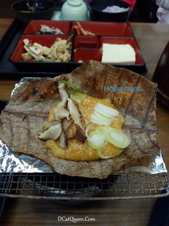 SHIRAKAWA GO DAN GOKAYAMA , AINOKURA VILLAGE